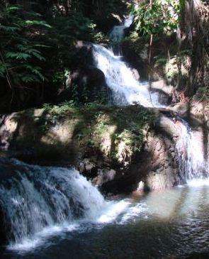 waterfalls in botanical garden