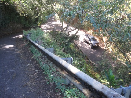 Steep road down into Waipio Valley. Notice truck on lower road after first hairpin turn.