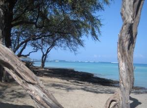 Anaeho'omalu Bay (A-Bay)
