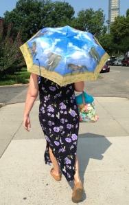 Di uses umbrella