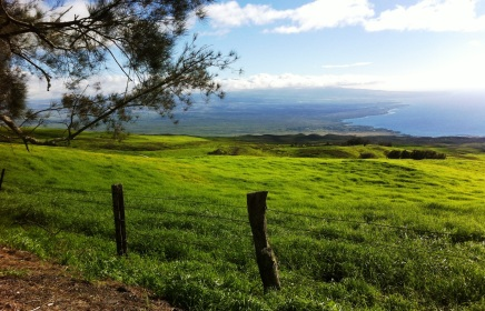 along the spine of Kohala mt