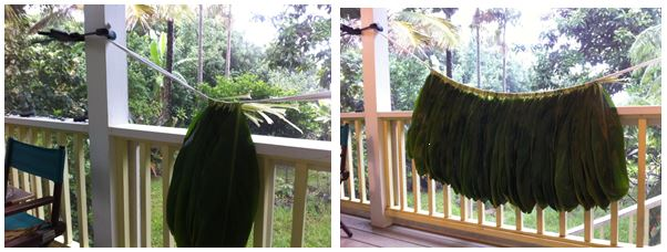 making the ti leaf skirt