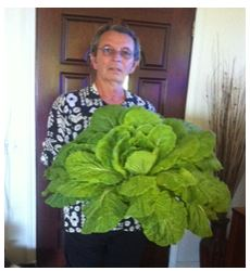 My friend Mitch with his Chinese cabbage
