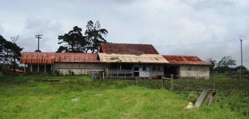abandoned Parker Ranch slaughter house
