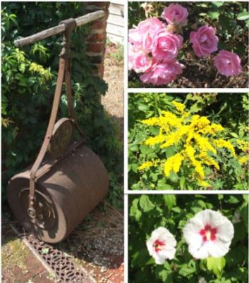 garden compressor and flowers