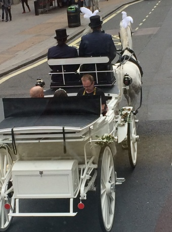 wedding party in horse and carriage with photographer