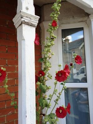 front door at flat