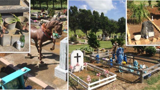 cemetery-in-naalehu