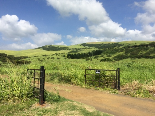 the vistas of Kau