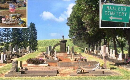 tree-lined-cemetery-in-naalehu